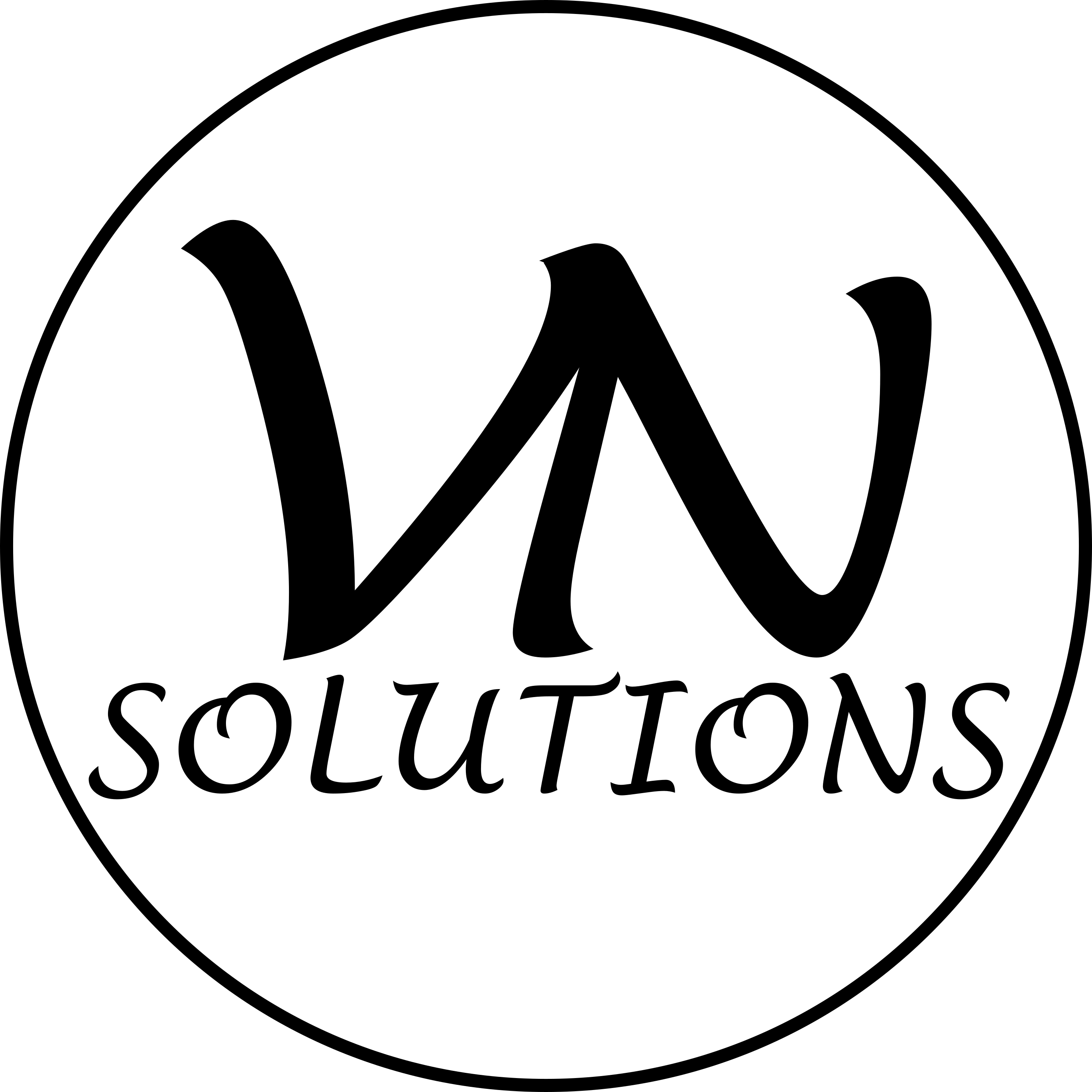 vnsolutions.png